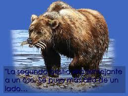 daniel oso