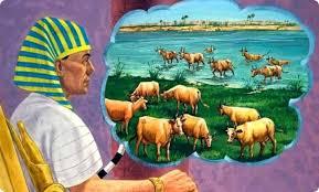 Jose y las vacas flacas